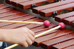 Xylophone playing Stock Images