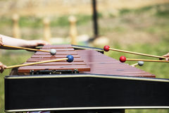 Xylophone with playing hands. Red marimba xylophone. Music percussion instrument. Stock Image
