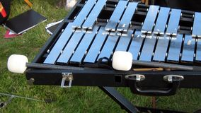 Xylophone and sticks Royalty Free Stock Image