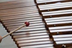 Xylophone, Tasten Stockfoto