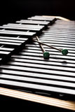 Xylophone with two mallets Stock Image
