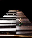 Xylophone with two mallets. Dark background. Close-up Royalty Free Stock Image