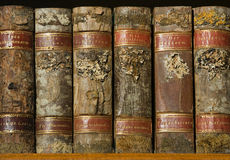 Xylotheca wooden books at the shelf Royalty Free Stock Photos