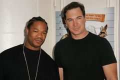 Xzibit, Patrick Warburton Stock Photo