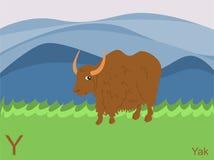 字母表动物看板卡闪光y牦牛 免版税库存照片