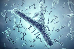 Y Chromosome in the foreground, a scientific concept. 3d illustration Royalty Free Stock Photos