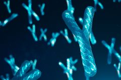 Y-Chromosomes with DNA carrying the genetic code. Genetics concept, medicine concept. Future, genetic mutations. Changing the genetic code at the biological royalty free stock images