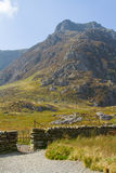 Y Garn Royalty Free Stock Photos