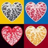 Żyłkowaci serca Fotografia Stock
