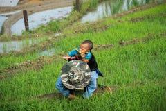 Y Ty,越南- 2017年5月12日:少数族裔照顾与她的后面工作的小孩在露台的领域 免版税库存照片