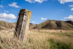 Y viejos posts de la cerca en hierba alta Imagen de archivo