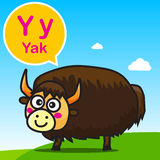 Y Yak color cartoon and alphabet for children to learning vector. Y Yak animal cartoon and alphabet for children to learning vector illustration eps10 Stock Images