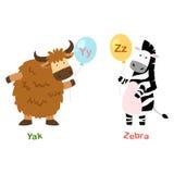 Y-yaks de lettre d'alphabet, Z-zèbre Images stock