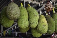 Yaca-Frucht Stockbilder