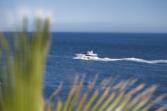 Yacht. Yatch in the coastline between vegetation Royalty Free Stock Image