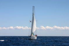 Yacht. White yacht sailing in Croatia on the sea Stock Images