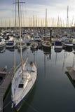 Yacht al porticciolo di Brighton Fotografia Stock