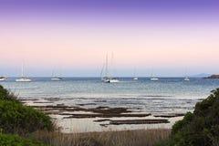 Yacht ancorati in una baia calma al crepuscolo Fotografia Stock