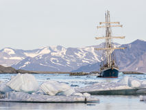 Yacht in the Arctic fjord - landscape Royalty Free Stock Photo