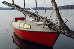 Yacht-Birken-Insel Lizenzfreie Stockfotos