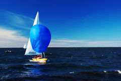 Yacht with blu spinnaker Royalty Free Stock Images