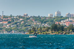 Yacht boat sailing in the Sydney Harbour Royalty Free Stock Image
