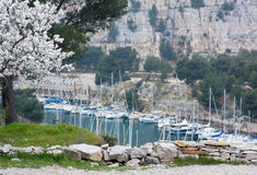 Yacht boats in cassis. Yacht boats in the calanques near cassis Stock Photography