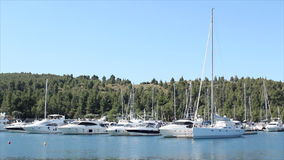 Yacht and boats stock video