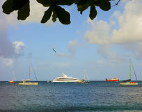 Yacht che godono del riparo della baia di Ministero della marina, Bequia Fotografia Stock Libera da Diritti