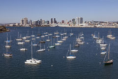 Yacht Club and Downtown San Diego, California Royalty Free Stock Photography