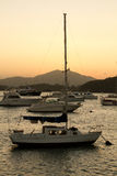 Yacht club Panamá Imagem de Stock