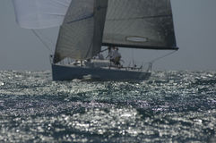 Yacht Competes In Team Sailing Event Stock Photography