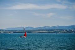 Yacht con la navigazione rossa della vela sulle onde del mare Fotografie Stock Libere da Diritti