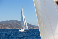 Yacht di lusso delle navi di navigazione con le vele bianche nel mare sport Fotografia Stock Libera da Diritti
