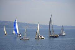 Yacht di navigazione della baia di Varna, Bulgaria Immagini Stock