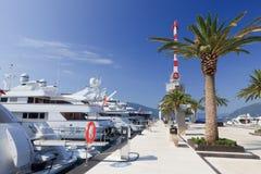 Yacht e palma di lusso Immagini Stock Libere da Diritti