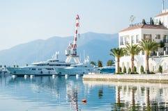 Yacht e palme nel porto Immagine Stock Libera da Diritti