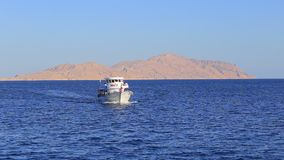 Yacht in Egypt stock video