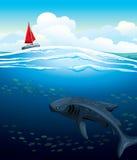 Yacht et grand requin de baleine. Photographie stock