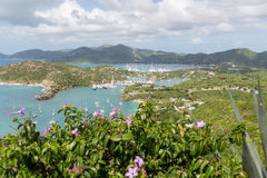 Yacht Harbor Beyond Flowers on Hill Stock Photography