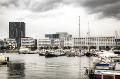 Yacht harbour in the city of Antwerp Stock Image
