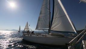 Yacht i seglingregatta Rader av lyxiga yachter på marinaskeppsdockan lager videofilmer
