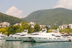Yacht-Jachthafen in Budva, Montenegro Stockbilder