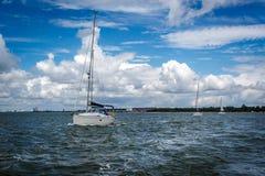 Yacht-Konvoi Lizenzfreie Stockfotos