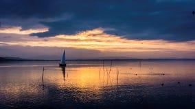 Yacht a navigação no por do sol com os juncos no primeiro plano fotografia de stock
