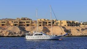 Yacht stock video