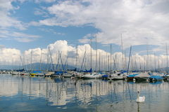 Yacht, nubi e un cigno fotografia stock