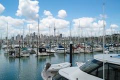Yacht på hamnen i Auckland, Nya Zeeland fotografering för bildbyråer