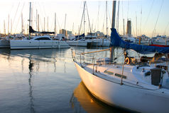 Yacht Parking Lot. Yachts at the marina in the late afternoon light Stock Photos