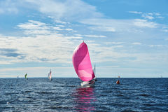 Yacht with pink spinnaker Royalty Free Stock Image